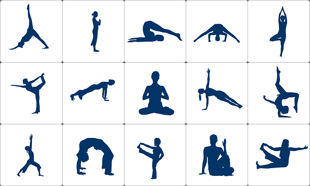 yoga exercises leason cost
