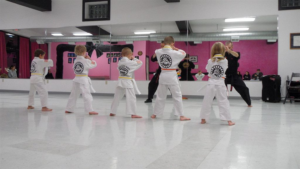 Average cost of learning karate