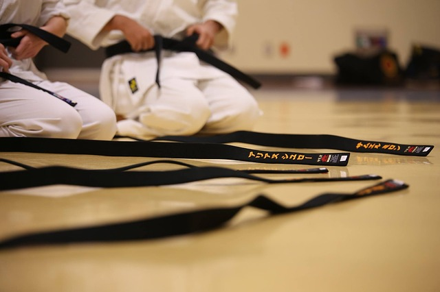 Karate blackbelt price overview