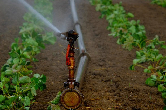 Sprinkler system being used for agriculture in united states